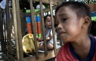 کودکان آواره مانیل