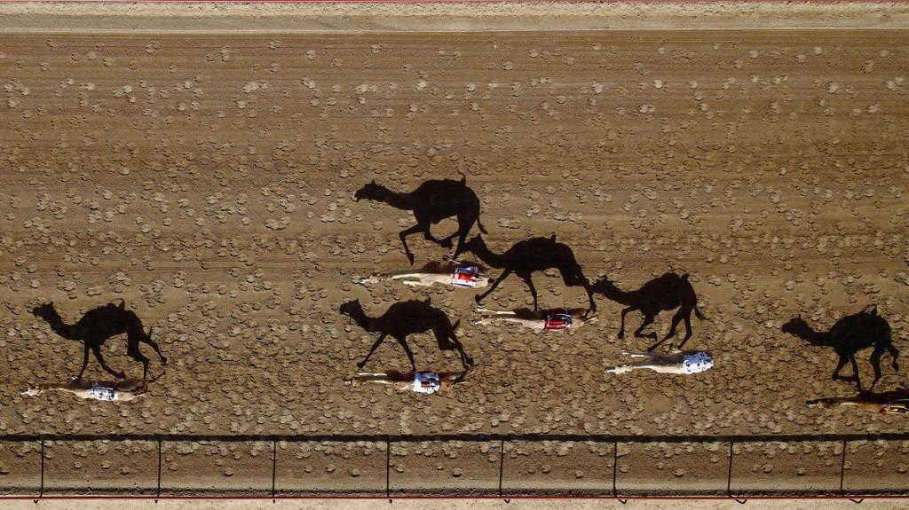 Al-Marmoun-Vertical-Race-Track-Dubai-UAE-by-Shoyab-doorbin-info
